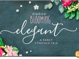 Font chữ Blooming Elegant Script Việt hoá