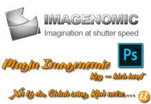 Plugin Imagenomic