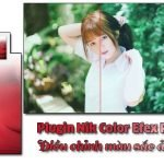 Plugin Nik Color Efex Pro 4