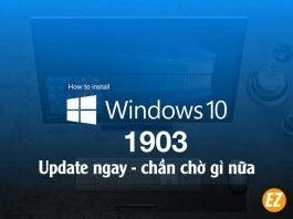 Cập nhập windows 10 1903
